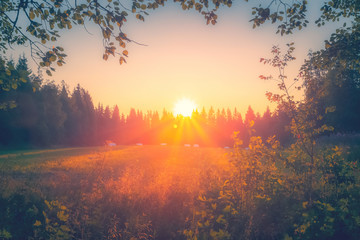 Summer night sunset view from Sotkamo, Finland. Wall mural
