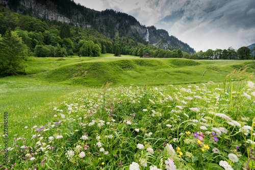 Wall mural colorful wildflower meadow and old hut in a mountain landscape with waterfall