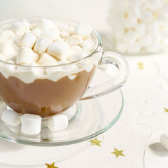 Close up of Cup of hot delicious cocoa drink with marshmallows.