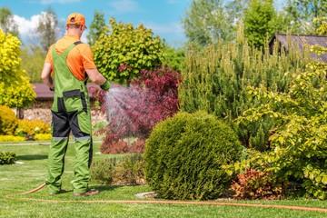 Fototapeta Men Watering Garden Plants obraz