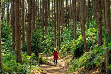 Woman in red trekking in forest