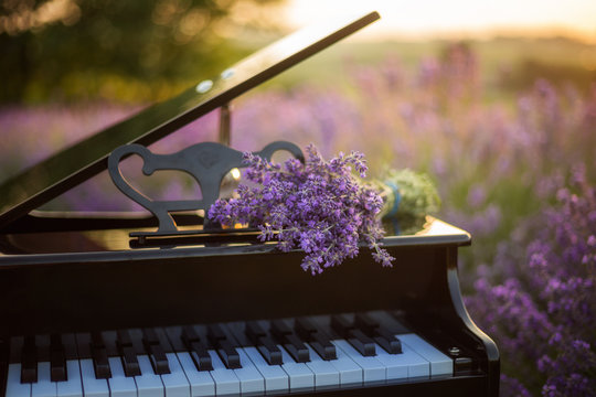 A bouquet of lavender lies on the of piano. Romantic spring backgroud