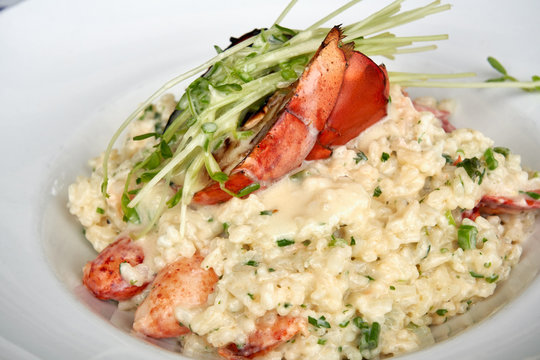close up of lobster risotto in a white bowl topped with a half a grilled lobster tail