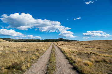 A dirt road curves through grassy fields and ranch land under a beautiful blue sky with white puffy clouds