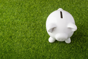 Piggy bank on grass background with quarter coins. Money saving concept. Saving. view from above Fototapete