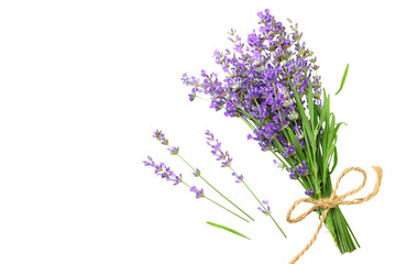 Tuinposter Lavendel lavender flowers isolated on white background. bunch of lavender flowers.