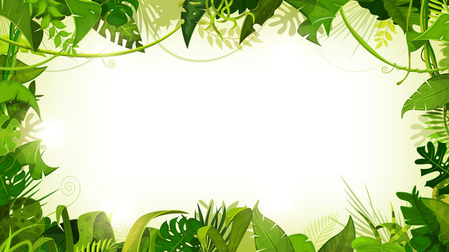 Jungle Tropical Landscape Wide Background/ Illustration of a jungle landscape background, with ornaments made with leaves and foliage of tropical plants and trees