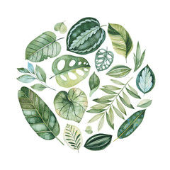 Beautiful green arrangement.Handpainted illustration with colorful exotic leaves. Tropical forest collection.Perfect for wedding,quotes,greeting card,logo,invitations,print,label.
