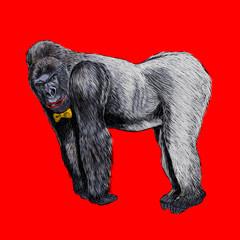 The gorilla cartoon character in pop art style.