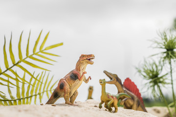 selective focus of toy dinosaurs on sand dune among tropical plants Wall mural
