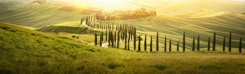 Foto auf AluDibond Toskana Italian Landscape with a Winding Road with Cypress Trees at Sunset