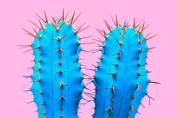 Cacti colorful fashionable mood. Trendy tropical Neon Cactus plant on Pink Color background. Fashion Minimal Art Concept. Creative Style.