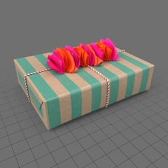 Gift wrapped box 2