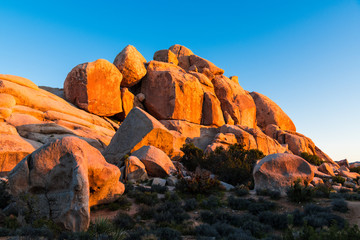 Rock formation of huge sandstone boulders glowing in the golden light of sunset - Joshua Tree National Park, California