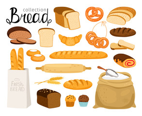 Vector bread collection. Cuisine cartoon bakery food, bagel and baguette, wheat bread slices for breakfast, croissant and small pretzel, flour and grain set