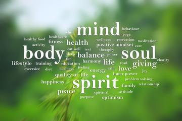 Fototapeta Body Mind Soul Spirit, Motivational Words Quotes Concept obraz