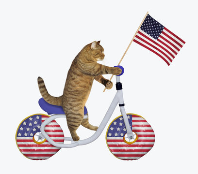 The cat patriot with the us flag is riding the bicycle. The wheels look like big donuts. White background. Isolated.