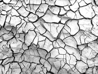 dry soil in black and white photography for background Fototapete