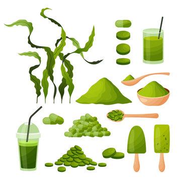 Spirulina cartoon set with seaweeds powder tablets capsules smoothie ice cream algae isolated on white background, vector illustration