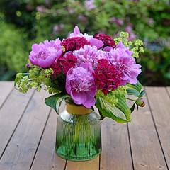 Fresh peony flowers in garden. Pink peonies in vase on wooden floor and bokeh background.