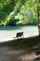 Wall Mural - shaded and empty park bench on an idyllic and pictruresque riverbank in cool lush summer forest