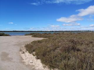 Lac du Ponant, la grande motte, hérault, france