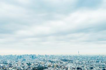 Wall Mural - city skyline aerial view of Ikebukuro in tokyo