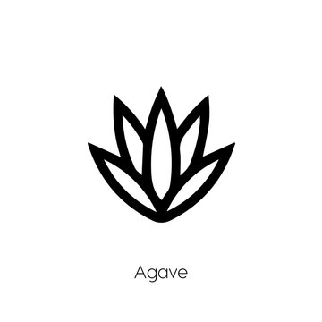 Agave icon. Plant vector symbol. Linear style sign for mobile concept and web design. Cactus symbol illustration. Pixel vector graphics - Vector