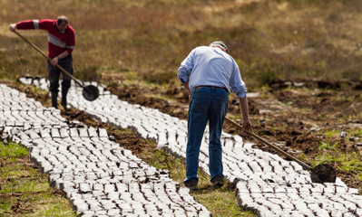 Men cutting turf in a peat bog field in rural Ireland, Peat bog is cultivated as a fuel source during spring season in the republic of Ireland