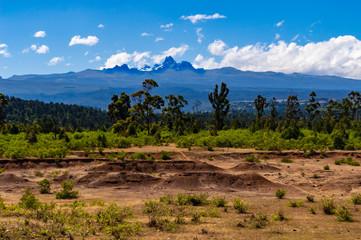 Panorama of Mount Kenya, Wall mural