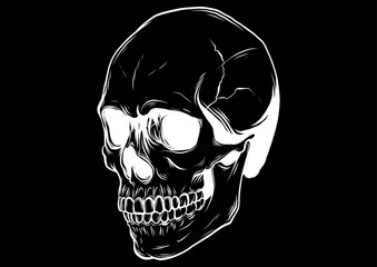 outline vector skull in black illustration design