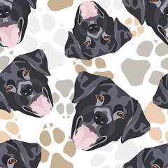 Muster Hundepfoten schwarzer Labrador