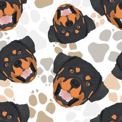 Muster Hundepfoten Rottweiler