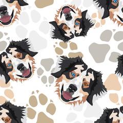 Muster Hundepfoten Australian Shepherd
