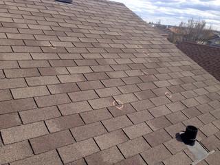 Hail Damaged Roof Shingles Insurance Claim