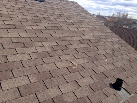 Hail Damaged Roof Shingles Insurance Claim