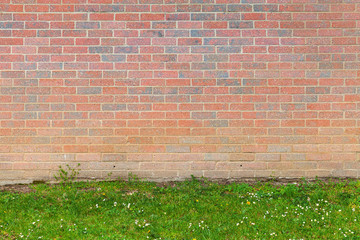 Fototapete - Red brick wall and green grass background