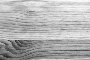 Texture of wood close up. Monochrome wooden background