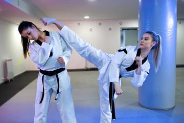 Sparring partners exercising martial art techniques