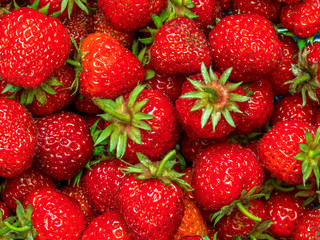 Bunch of juicy organic strawberries shot from above
