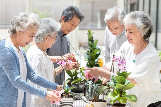 Senior friends in nursing home