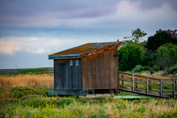 old wooden house at the marsh