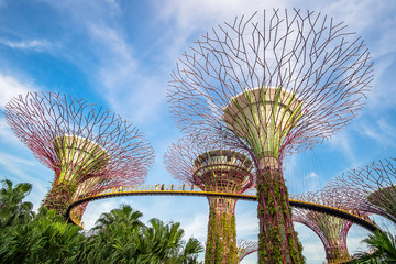 Fotobehang - Singapore travel concept, landmark and popular for tourist attractions