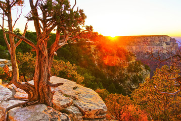 The beautiful view of Grand Canyon from the south rim of Grand Canyon National Park at sunset.