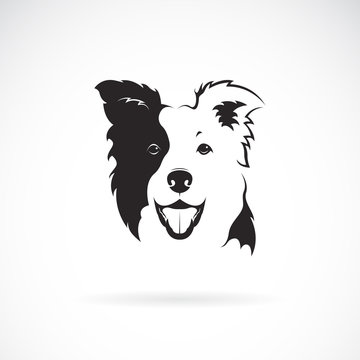 Vector of a border collie dog on white background. Pet. Animal. Dog logo or icon.