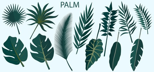 Vector set of tropical leaves. Laser cut. Template for laser cutting and Plotter. Vector illustration. Pattern for the laser cut, serigraphy, plotter.
