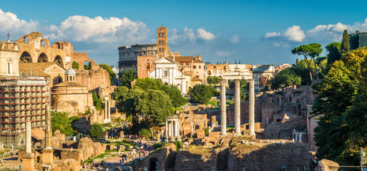 Fototapete - Roman Forum in summer, Rome, Italy. It is one of the top tourist attractions in Rome. Scenic view of remains of Rome ancient city. Panorama of Roman Forum ruins in the Rome center in sunset light.