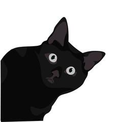 Obraz Ilustración de gato de pelo negro. Diseño plano de felino domestico, silueta de animal observando. - fototapety do salonu