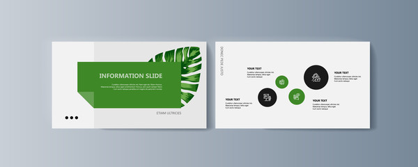 Set of brochures about Toucan bird and tropical flora