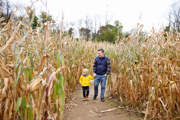 Little boy and his father having fun on pumpkin fair at autumn. Family walking among the dried corn stalks in a corn maze. Traditional american amusement on fair.